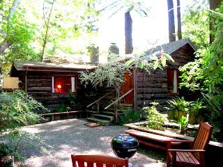 JOHNNY'S LANDING - Russian River vacation rentals