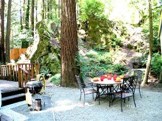Romantic 1 bedroom Cazadero House with Internet Access - Cazadero vacation rentals