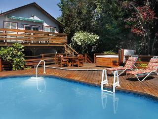 SUNNY SKIES - Santa Rosa vacation rentals