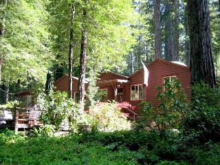 ZEN HOUSE - Sonoma County vacation rentals