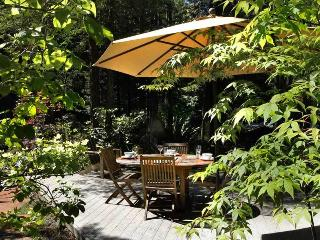 Beautiful 2 bedroom House in Guerneville with Internet Access - Guerneville vacation rentals
