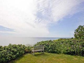 Picturesque House in Nantucket (8121) - Image 1 - Nantucket - rentals
