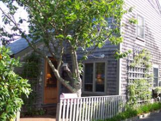 Nice 1 BR-2 BA House in Nantucket (8337) - Image 1 - Nantucket - rentals
