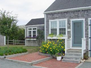 45 1/2 Milk Street - Image 1 - Nantucket - rentals