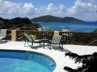 2 minute walk to Mahoe Beach with private pool. 2 minute walk to tennis courts. VG SAT - Mahoe Bay vacation rentals