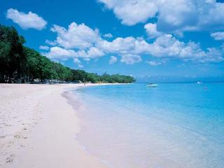 Directly on Sandy Lane Beach. AA LDM - Fitts Village vacation rentals