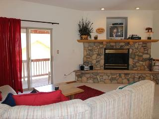 Amazing Townhouse with Fireplace, Common Hot Tub, and private Garage - Dillon vacation rentals