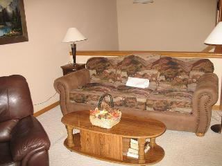 LR85L- Lovely Townhouse with Fireplace, Wifi, Common Hot Tub, and Garage - Dillon vacation rentals
