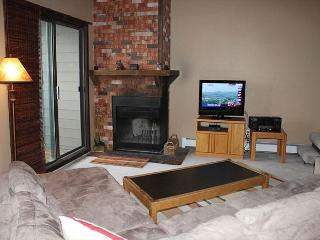 TH304E Choice Condo w/Wifi, Clubhouse, Mountain Views - Silverthorne vacation rentals
