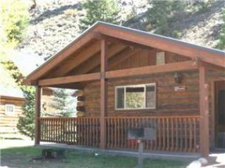 Comfortable and Clean 2 BR Cabin at Three Rivers Resort in Almont (#27) - Almont vacation rentals