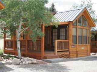 "Cozy ""Modular"" Style 1 BR with Sleeping Loft Cabin at Three Rivers Resort in Almont (#42) - Almont vacation rentals"