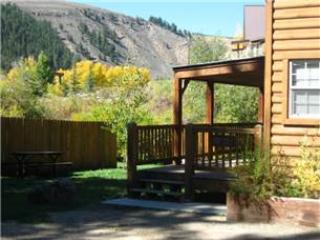 Modern 1 BR with Sleeping Loft Cabin on the Taylor River at Three Rivers Resort in Almont (#57) - Image 1 - Almont - rentals