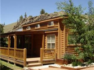 Modern 1 BR with Sleeping Loft Cabin on the Taylor River at Three Rivers Resort in Almont (#59) - Image 1 - Almont - rentals