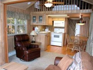 Modern 1 BR with Sleeping Loft Cabin on the Taylor River at Three Rivers Resort in Almont (#63) - Image 1 - Almont - rentals