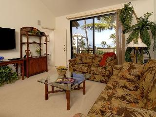 Nice 2 bedroom Condo in Wailea - Wailea vacation rentals