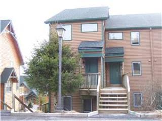 Powder Ridge #81 - Image 1 - Snowshoe - rentals