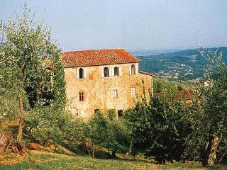 Property among olive groves and vineyards on the hills east of Lucca. Composted of an old stone- built house and guesthouse. SAL - Lucca vacation rentals