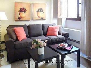Perfect Ponte Vecchio Apt-Romantic-Central-Jacopo - Luco Mugello vacation rentals