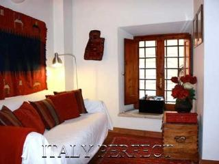Perfect Campo de Fiori-Piazza Navona-Cute-La Giuli - Rome vacation rentals