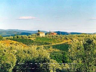 Perfect Tuscany Chianti Vineyard Villa-Great Views - San Casciano in Val di Pesa vacation rentals