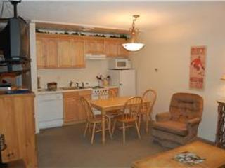 Hi Country Haus Unit 315 - Image 1 - Winter Park - rentals