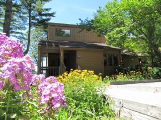 Eagle's Nest - Sapphire vacation rentals