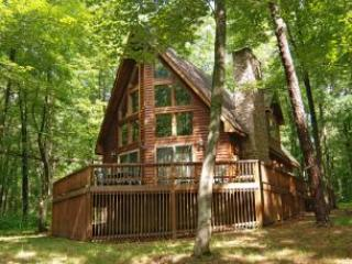 Deep Creek Corral - Oakland vacation rentals