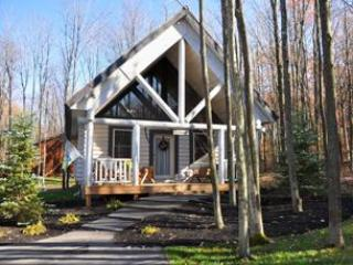 The Whitetail - Western Maryland - Deep Creek Lake vacation rentals