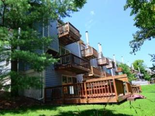 Villages of Wisp #01 Winding Way - McHenry vacation rentals