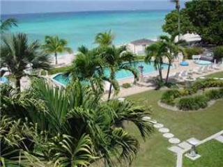 Fully equipped 2BR condo, direct walk to beach #17 - Image 1 - Seven Mile Beach - rentals