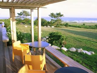 653 - ATLANTIC OCEAN BREEZES,GLORIOUS VIEWS! - Image 1 - Chilmark - rentals