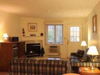 Luxurious 1BR condo with balcony, free Wi-Fi - A2 204A - Lincoln vacation rentals