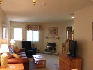 3BR Multi-level condo with TV/VCR - B3 318B - Franconia vacation rentals