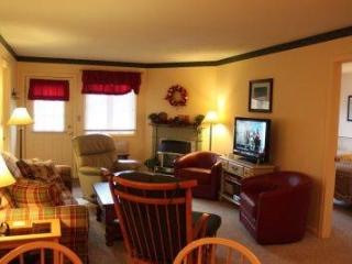 Spacious 1BR condo with Queen bed, fireplace - B1 124B - Franconia vacation rentals