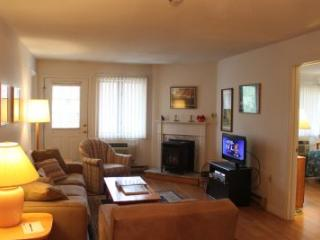 2BR condo with balcony, free Wi-Fi - B2 219B - Lincoln vacation rentals
