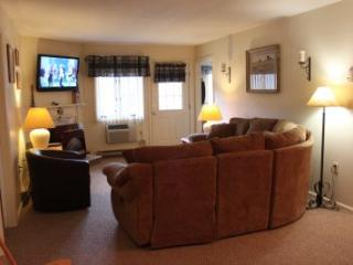 2BR condo with King bed, fireplace - C2 234C - Lincoln vacation rentals