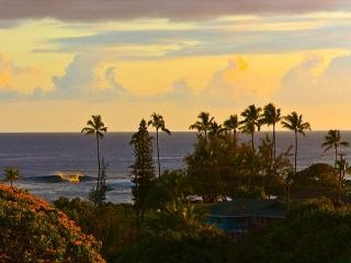 Poipu BEACH steps from your door!!  Sleep 7+ BEST DEAL in POIPU ** WOW CALL! - Koloa vacation rentals