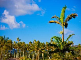 ****AVIS Car Inc.**** Top Floor Mountain View 3 beds CALL NOW!!!! - Kapaa vacation rentals