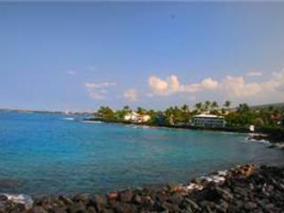 Sea Village#1103 - Image 1 - Kailua-Kona - rentals