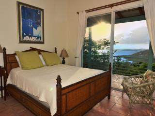 Gorgeous Villa with Internet Access and A/C - Virgin Grand Estates vacation rentals