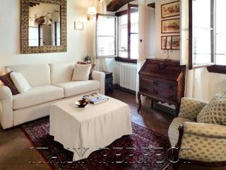 Perfect-Charming-Value & Location-A/C-Sunny Olivia - Florence vacation rentals