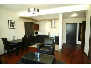 IMG2390 - Royal 6 - Krakow - rentals