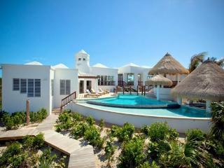 Striking architectural masterpiece on 2 landscaped acres of Grace Bay beachfront property. TNC TBZ - Grace Bay vacation rentals