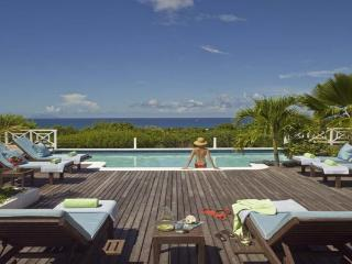 Hillside villa with guest house and a large poolside terrace. C JET - Terres Basses vacation rentals