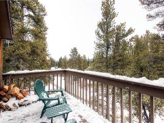 Conveniently Located Mark IX Condominiums 2 Bedroom Condominium - MK8 - Breckenridge vacation rentals