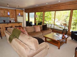 Durant Condominiums Unit C1 - Aspen vacation rentals