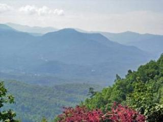 Far Horizon - Image 1 - Bryson City - rentals