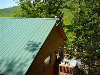 Simple Gifts - Image 1 - Bryson City - rentals
