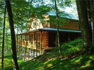 Raccoon Roost - Bryson City vacation rentals