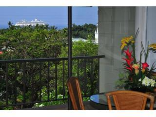 Kalankai Oceanview 1BR: HDTV,WiFi - Book now! - Kailua-Kona vacation rentals